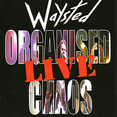 Organised Chaos ... Live by Waysted