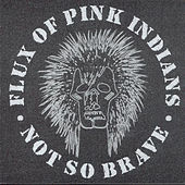 Not So Brave by Flux Of Pink Indians