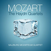 Play & Download Mozart: The Haydn Quartets by Salzburg Mozarteum Quartet | Napster