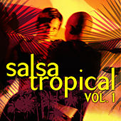 Play & Download Salsa Tropical Vol.1 by Emerson Ensamble | Napster