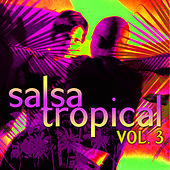 Play & Download Salsa Tropical Vol.3 by Emerson Ensamble | Napster