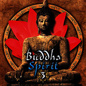Buddha Spirit 3 by Anael