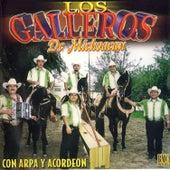 Play & Download Con Arpa y Acordeon by Los Galleros de Michoacan | Napster