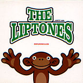Espandrillos by The Liptones