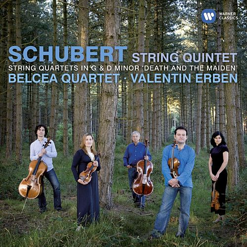 Play & Download Schubert: String Quintet, Quartet in G, Quartet in D minor by Various Artists | Napster
