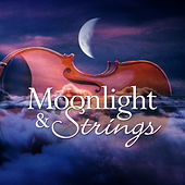 Moonlight & Strings by 101 Strings Orchestra