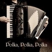 Play & Download Polka, Polka, Polka by 101 Strings Orchestra | Napster