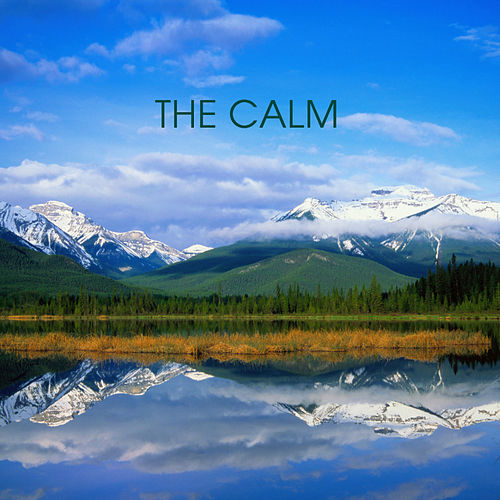 The Calm by 101 Strings Orchestra