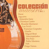 Play & Download Coleccion Maestra Vol. 1 by Various Artists | Napster