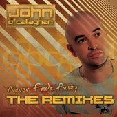 Never Fade Away by John O'Callaghan