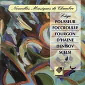 Nouvelles Musiques de Chambre by Vincent Dujardin