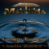 Play & Download Las Viejas Mas Buenas by Mojado | Napster