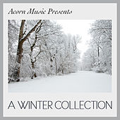 Play & Download Acorn Music Presents - A Winter Collection by Various Artists | Napster