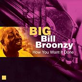 Play & Download How You Want It Done by Big Bill Broonzy | Napster