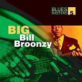 Play & Download Blues Masters Volume 5  (Big Bill Broonzy) by Big Bill Broonzy | Napster