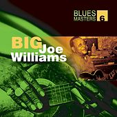 Blues Masters Volume 6 (Big Joe Williams) by Big Joe Williams