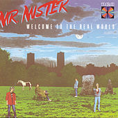 Play & Download Welcome To The Real World by Mr. Mister | Napster