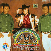 Play & Download Alvaro Monterrubio Acompañado Por Los Valente by Alvaro Monterrubio | Napster