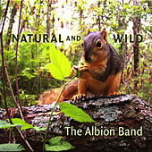 Play & Download Natural and Wild by The Albion Band | Napster