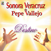 Play & Download Destino by Sonora Veracruz De Pepe Vallejo | Napster