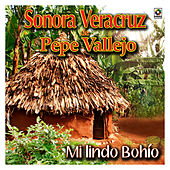 Play & Download Mi Lindo Bohio by Sonora Veracruz De Pepe Vallejo | Napster
