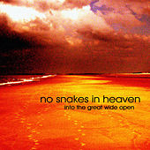 Play & Download Into The Great Wide Open by No Snakes In Heaven | Napster