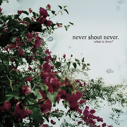 Play & Download What Is Love? by Never Shout Never | Napster