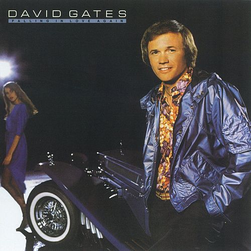 Falling In Love Again by David Gates