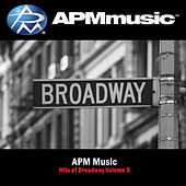Hits of Broadway BB Vol. 5 by Various Artists