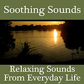 Play & Download Soothing Sounds - Relaxing Sounds From Everyday Life by Sonopedia | Napster