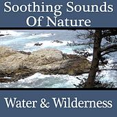 Play & Download Soothing Sounds Of Nature - Water & Wilderness by Sonopedia | Napster