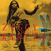 Play & Download Dragonfly by Ziggy Marley | Napster