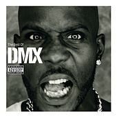 Play & Download The Best Of DMX by DMX | Napster