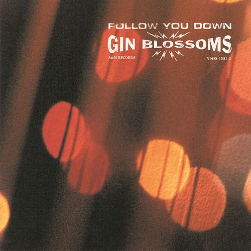 Follow You Down by Gin Blossoms