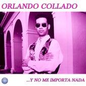 Y No Me Importa Nada by Orlando Collado