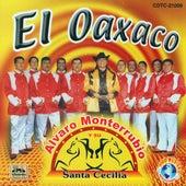 Play & Download El Oaxaco by Alvaro Monterrubio | Napster