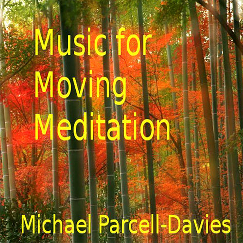 Play & Download Music For Moving Meditation by Michael Parcell-Davies | Napster