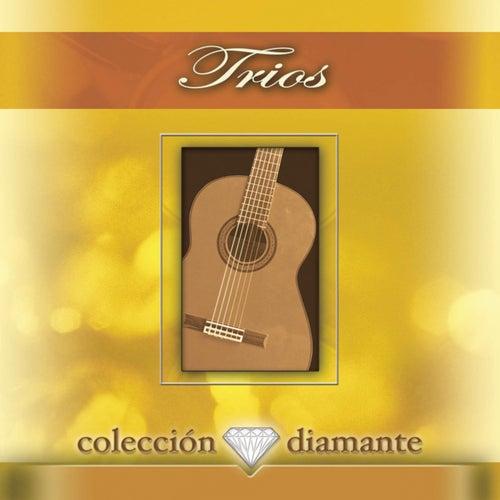 Trios: Coleccion Diamante by Various Artists
