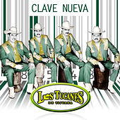 Play & Download Clave Nueva by Los Tucanes de Tijuana | Napster