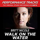 Walk On The Water (Premiere Performance Plus Track) by Britt Nicole