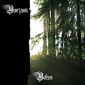 Play & Download Belus by Burzum | Napster