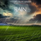 Play & Download Natural Music Sound : The Rain by Various Artists | Napster