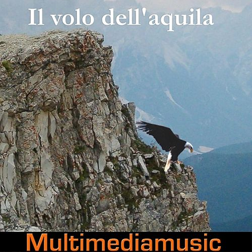 Play & Download Il volo dell'aquila by Various Artists | Napster