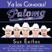 Ya los Conoces by Palomo