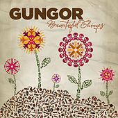 Play & Download Beautiful Things by Gungor | Napster