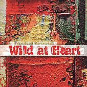 Wild At Heart by Rachel Brooks