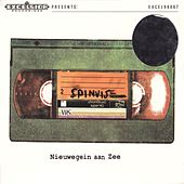 Play & Download Nieuwegein Aan Zee by Spinvis | Napster