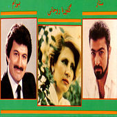 Bazmeh Irani by Various Artists