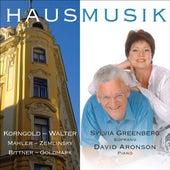Play & Download Greenberg, Sylvia: Hausmusik by Sylvia Greenberg | Napster