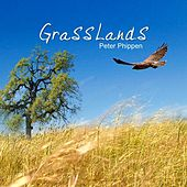Play & Download Grasslands by Peter Phippen | Napster